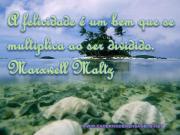Multiplica